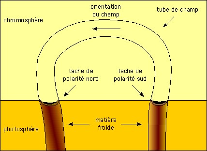 Schéma: tube de champ magnétique